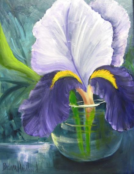 purpleWhiteIris45